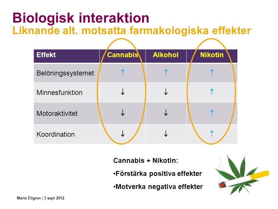 Biologisk interaktion EffektCannabisAlkoholNikotin Belöningssystemet  Minnesfunktion  Motoraktivitet  Koordination  Liknande alt. motsatta