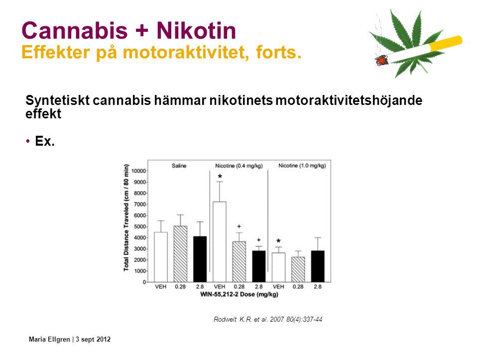 Cannabis + Nikotin Syntetiskt cannabis hämmar nikotinets motoraktivitetshöjande effekt Ex. Effekter på motoraktivitet, forts. Rodwelt K.R. et al. 2007