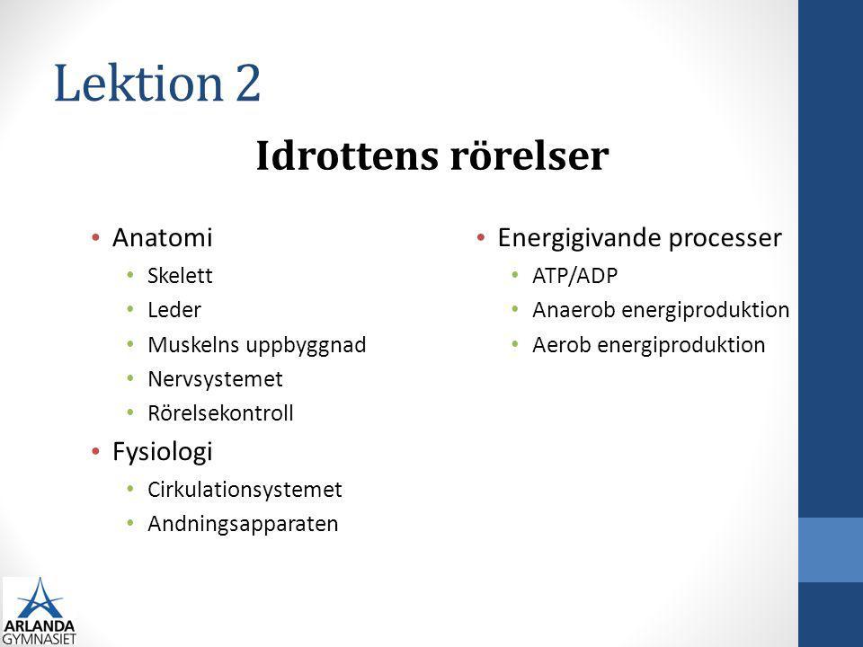 Lektion 2 Anatomi Skelett Leder Muskelns uppbyggnad Nervsystemet Rörelsekontroll Fysiologi Cirkulationsystemet Andningsapparaten Energigivande process