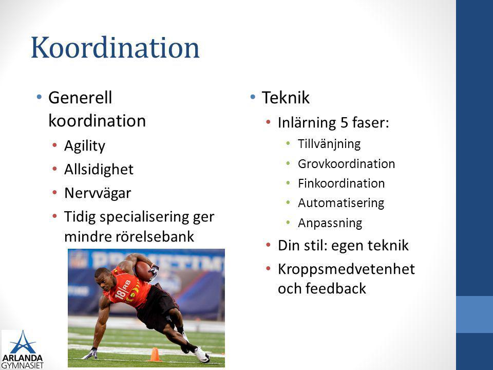 Koordination Generell koordination Agility Allsidighet Nervvägar Tidig specialisering ger mindre rörelsebank Teknik Inlärning 5 faser: Tillvänjning Gr