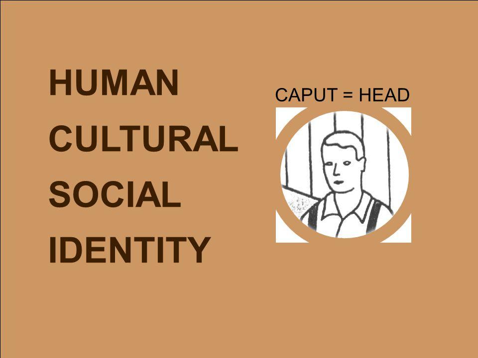 HUMAN CULTURAL SOCIAL IDENTITY CAPUT = HEAD