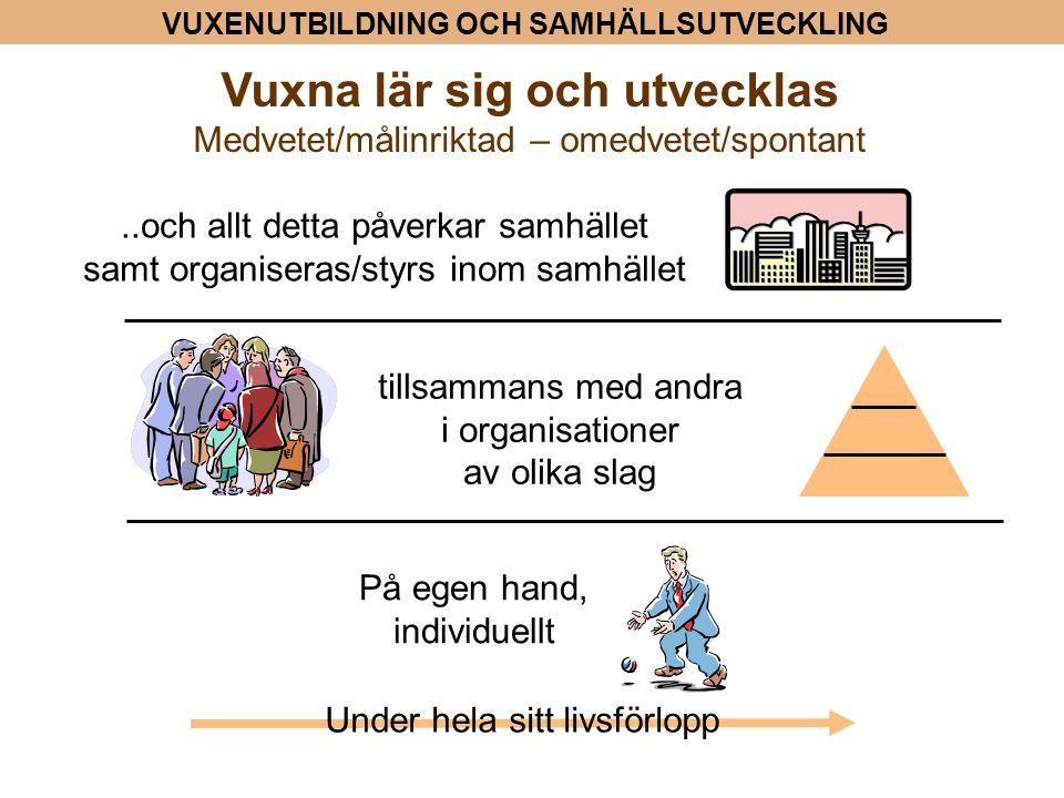 Vuxenutbildning i Norden och i Finland Enligt Nordic Adult Education Compared @ Det genomsnittliga deltagandet (andel av vuxna) klart högre än i övriga världen @ Skillnaden mellan Norden och den övriga världen mindre då det gäller arbetsrelaterad vuxenutbildning -> Nordisk folkbildningstradition @ Inga könsskillnader i Norden beträffande arbetsrelaterad vuxen- utbildning @ Skillnaderna i deltagandet i hela vuxenutbildningen mellan ålders- grupperna/generationerna dock stora (särskilt Finland) @ Skillnaderna i deltagandet i hela vuxenutbildningen mellan vuxna med olika utbildningsbakgrund (endast folk/grundskola - utbildning på andra stadiet/ högre utbildning) stora (särskilt Finland)