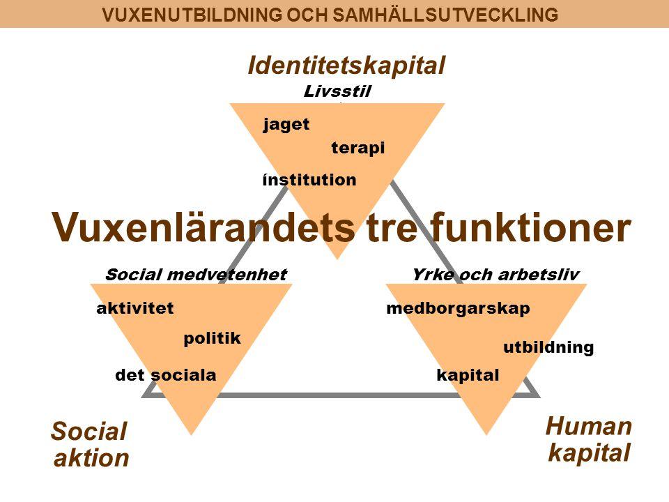 VUXENUTBILDNING OCH SAMHÄLLSUTVECKLING aktivitet politik det sociala Identitetskapital Social aktion Social medvetenhetYrke och arbetsliv kapital utbi