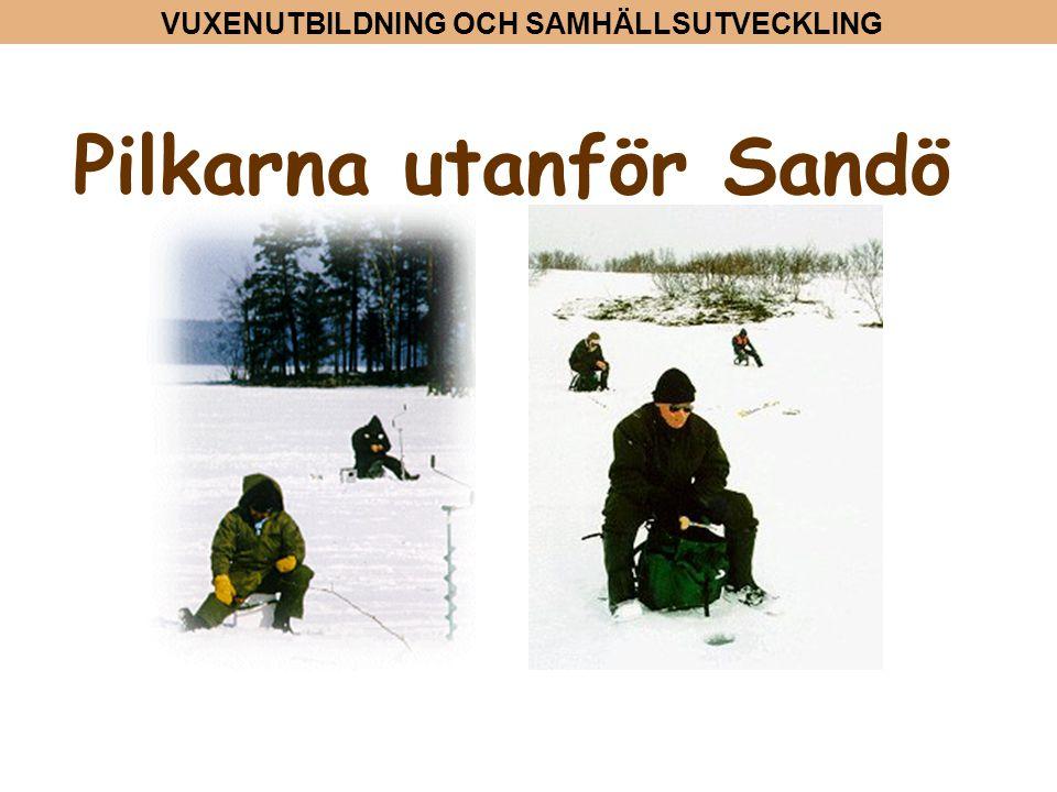 VUXENUTBILDNING OCH SAMHÄLLSUTVECKLING Pilkarna utanför Sandö