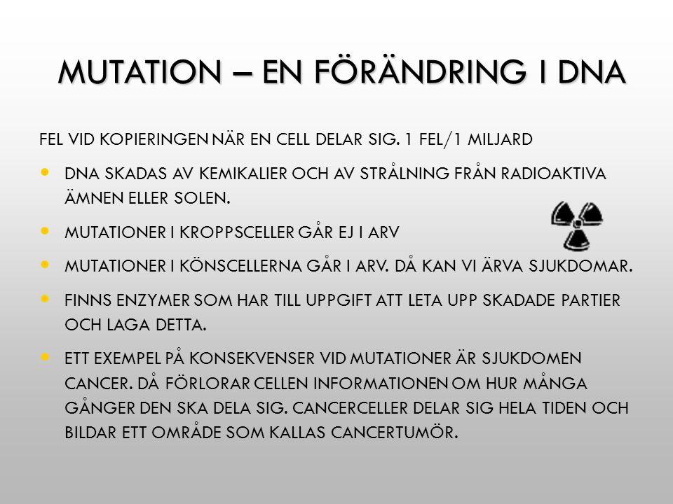 MUTATION – EN FÖRÄNDRING I DNA MUTATION – EN FÖRÄNDRING I DNA FEL VID KOPIERINGEN NÄR EN CELL DELAR SIG. 1 FEL/1 MILJARD DNA SKADAS AV KEMIKALIER OCH