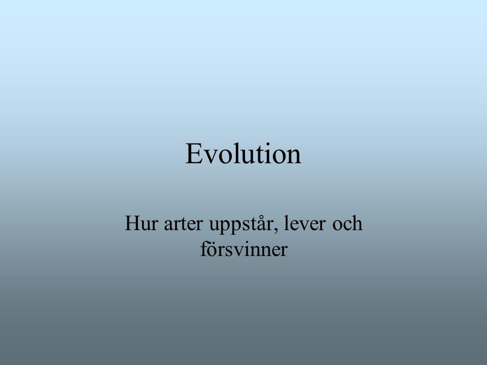Mikroevolution och makroevolution Mikroevolutionära skeenden förklarar hur arter bildas och utvecklas Begrepp: variation, naturligt urval, re- produktionsbarriärer anpassningar, populationer Makroevolution behandlar hur olika huvudgrupper av organismer uppstått Begrepp: utdöenden, artbildning, biogeografisk utbredning Makroevolutionen förklaras till stor del av mikroevolution