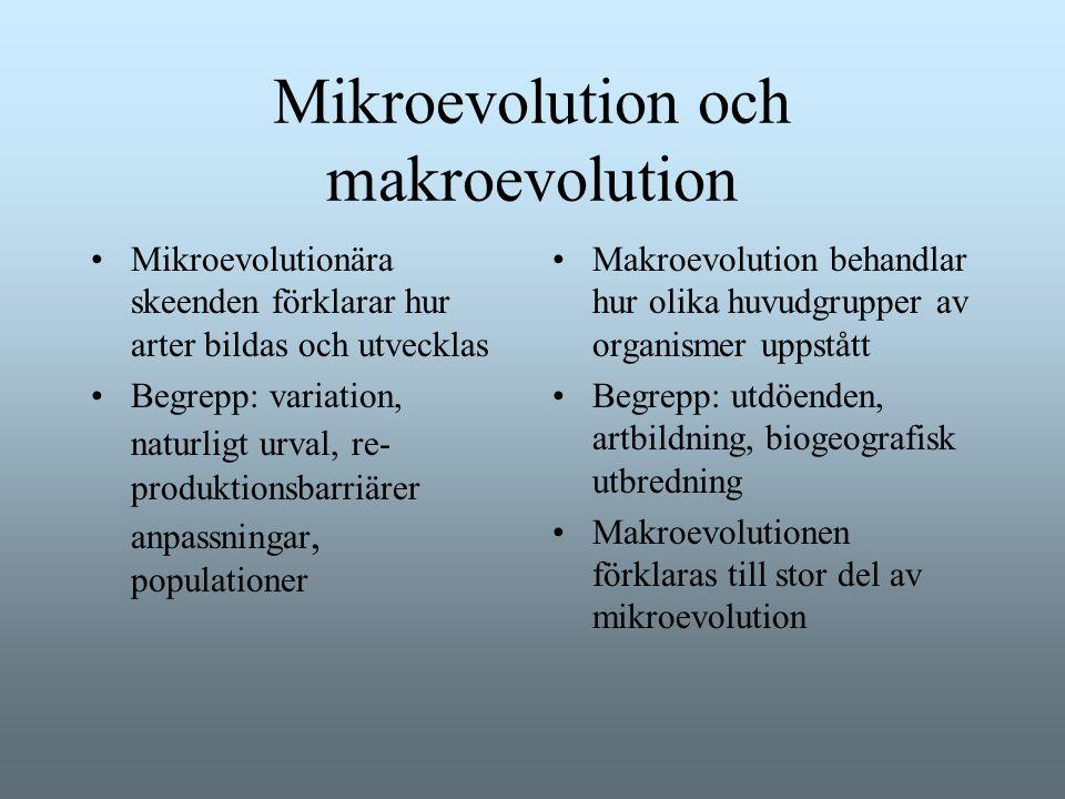 Mikroevolution och makroevolution Mikroevolutionära skeenden förklarar hur arter bildas och utvecklas Begrepp: variation, naturligt urval, re- produkt