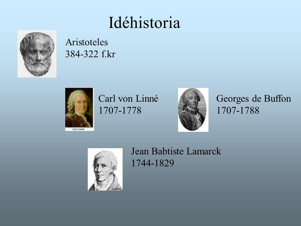 Idéhistoria Aristoteles 384-322 f.kr Carl von Linné 1707-1778 Georges de Buffon 1707-1788 Jean Babtiste Lamarck 1744-1829
