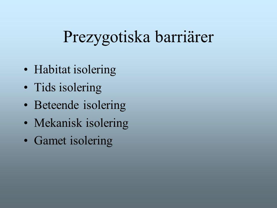 Prezygotiska barriärer Habitat isolering Tids isolering Beteende isolering Mekanisk isolering Gamet isolering