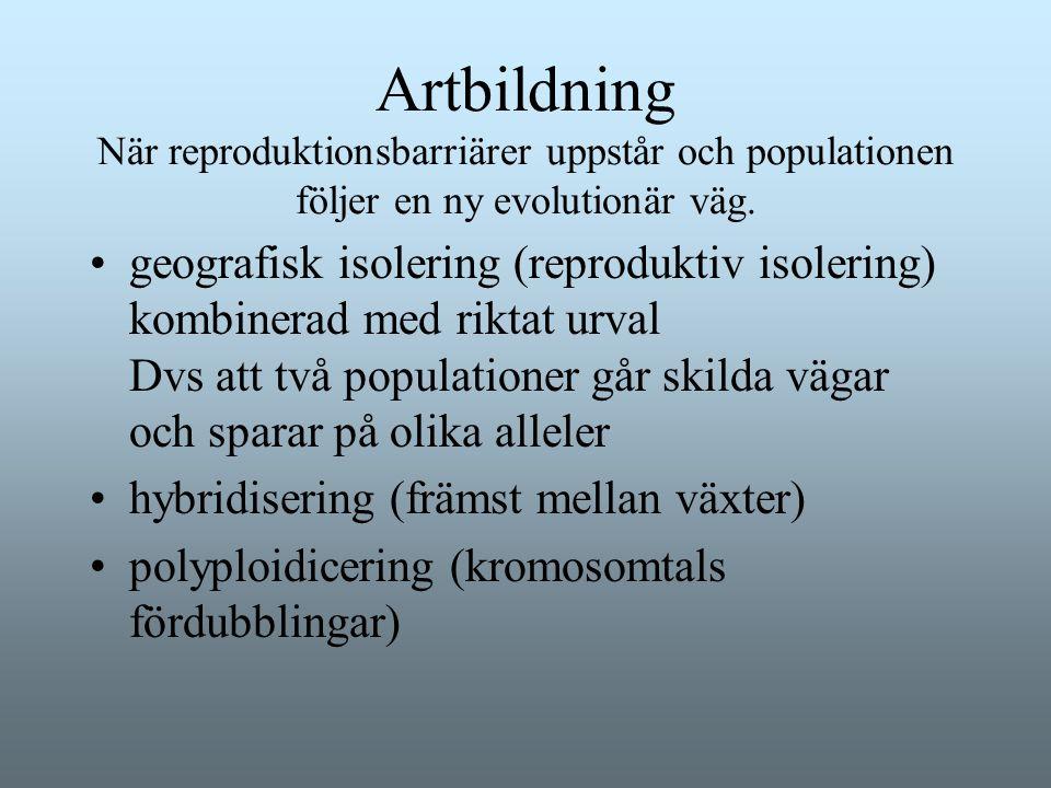 Artbildning När reproduktionsbarriärer uppstår och populationen följer en ny evolutionär väg. geografisk isolering (reproduktiv isolering) kombinerad