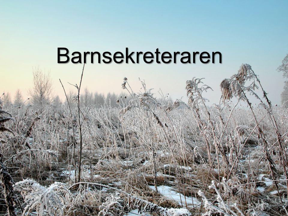 Myndighetsansvar Övervägande Vårdplan Genomförandeplan Utredning tex.