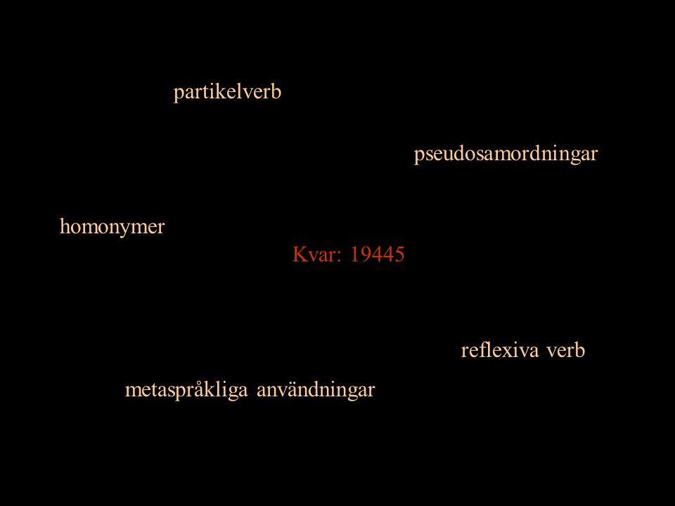 partikelverb reflexiva verb homonymer pseudosamordningar metaspråkliga användningar Kvar: 19445