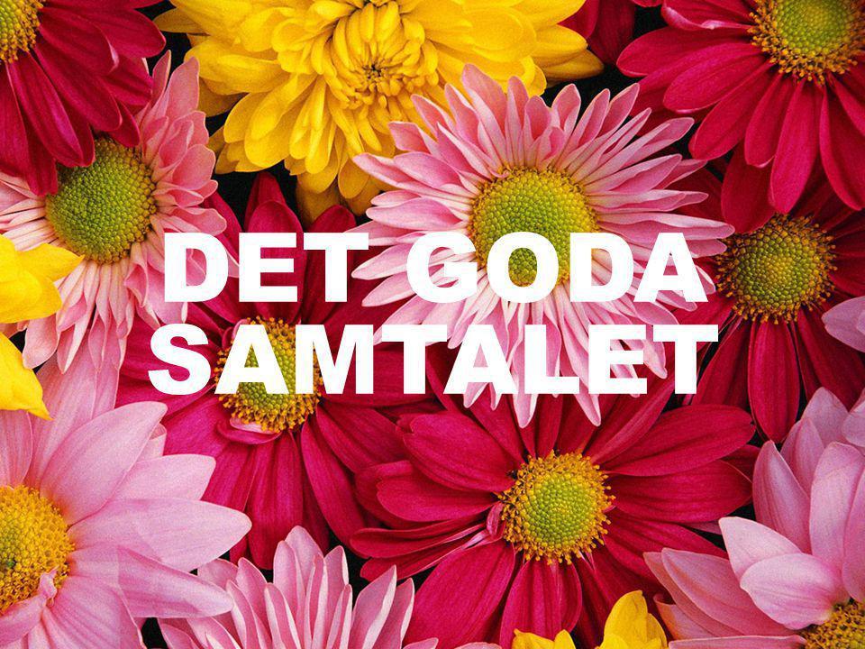 DET GODA SAMTALET