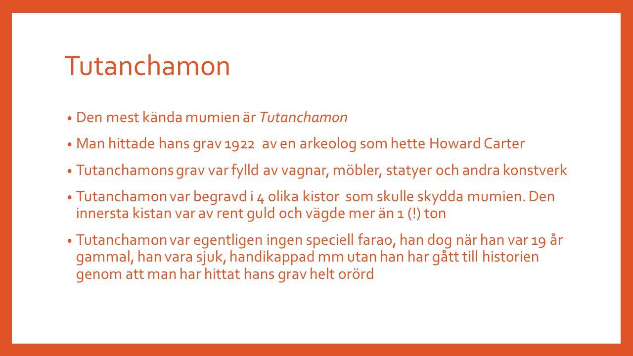 Tutanchamon Den mest kända mumien är Tutanchamon Man hittade hans grav 1922 av en arkeolog som hette Howard Carter Tutanchamons grav var fylld av vagn