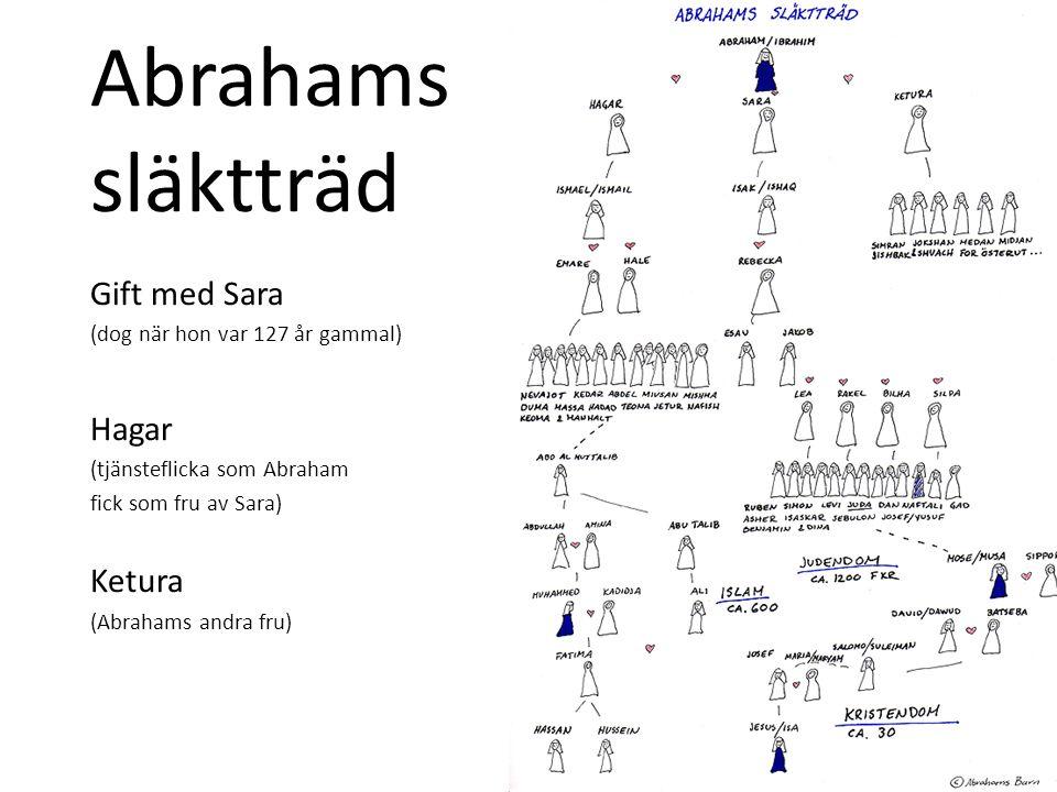Abrahams släktträd Gift med Sara (dog när hon var 127 år gammal) Hagar (tjänsteflicka som Abraham fick som fru av Sara) Ketura (Abrahams andra fru)