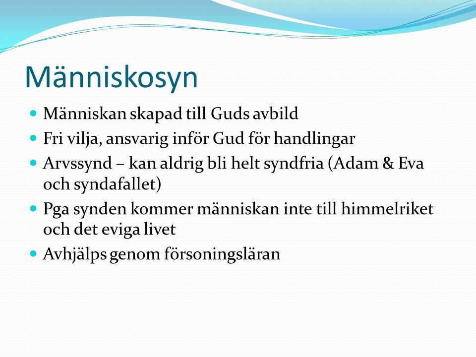 Människosyn Människan skapad till Guds avbild Fri vilja, ansvarig inför Gud för handlingar Arvssynd – kan aldrig bli helt syndfria (Adam & Eva och syn