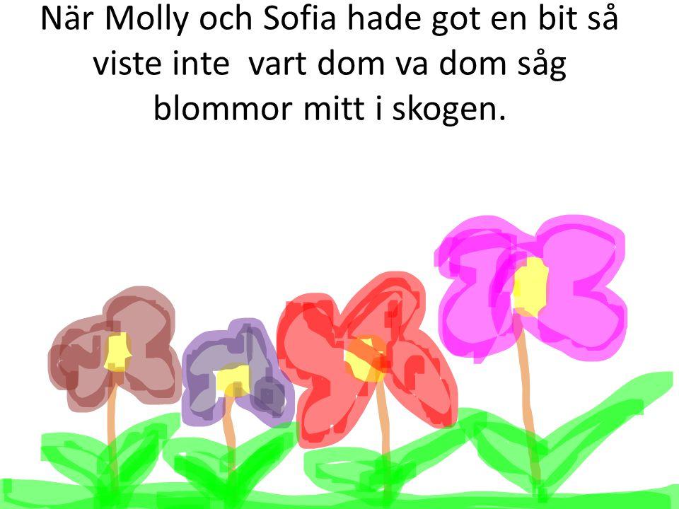 När Molly och Sofia hade got en bit så viste inte vart dom va dom såg blommor mitt i skogen.