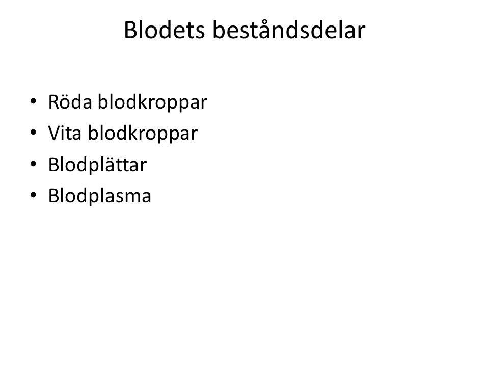 Blodets beståndsdelar Röda blodkroppar Vita blodkroppar Blodplättar Blodplasma