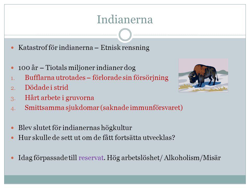 Indianerna Katastrof för indianerna – Etnisk rensning 100 år – Tiotals miljoner indianer dog 1. Bufflarna utrotades – förlorade sin försörjning 2. Död