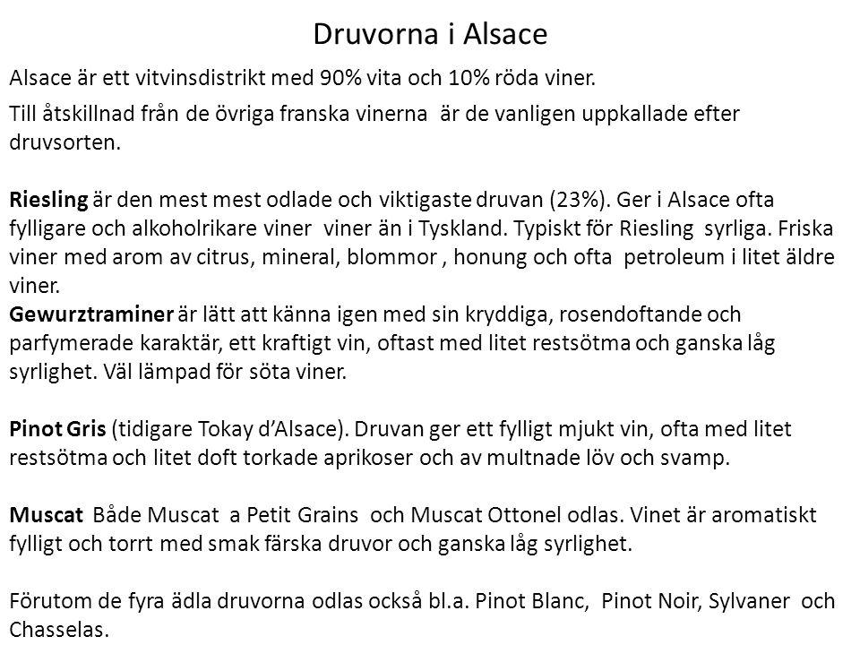 Druvorna i Alsace Alsace är ett vitvinsdistrikt med 90% vita och 10% röda viner. Till åtskillnad från de övriga franska vinerna är de vanligen uppkall