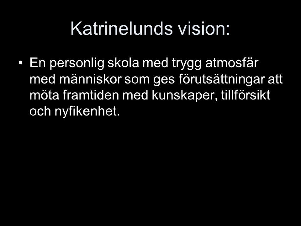 Katrinelunds vision: En personlig skola med trygg atmosfär med människor som ges förutsättningar att möta framtiden med kunskaper, tillförsikt och nyf