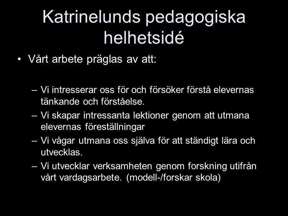 Katrinelunds pedagogiska helhetsidé Vårt arbete präglas av att: –Vi intresserar oss för och försöker förstå elevernas tänkande och förståelse. –Vi ska