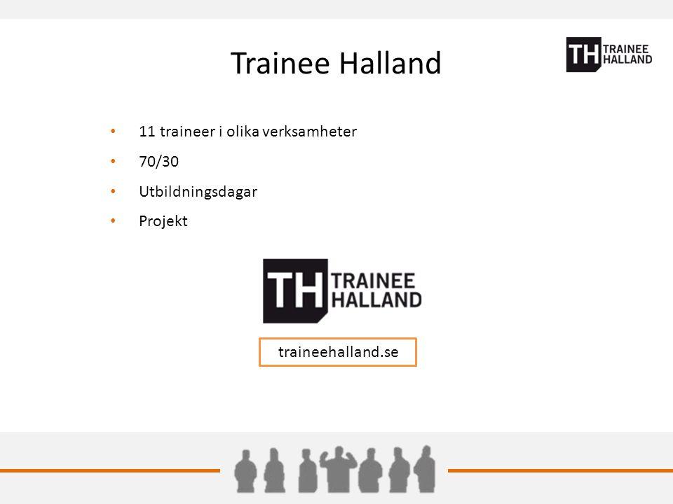 Trainee Halland 11 traineer i olika verksamheter 70/30 Utbildningsdagar Projekt traineehalland.se