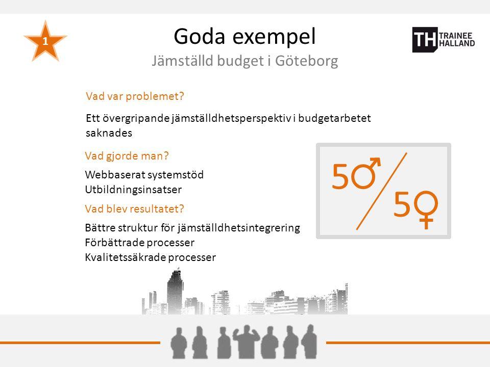 Goda exempel Jämställd budget i Göteborg Vad var problemet.