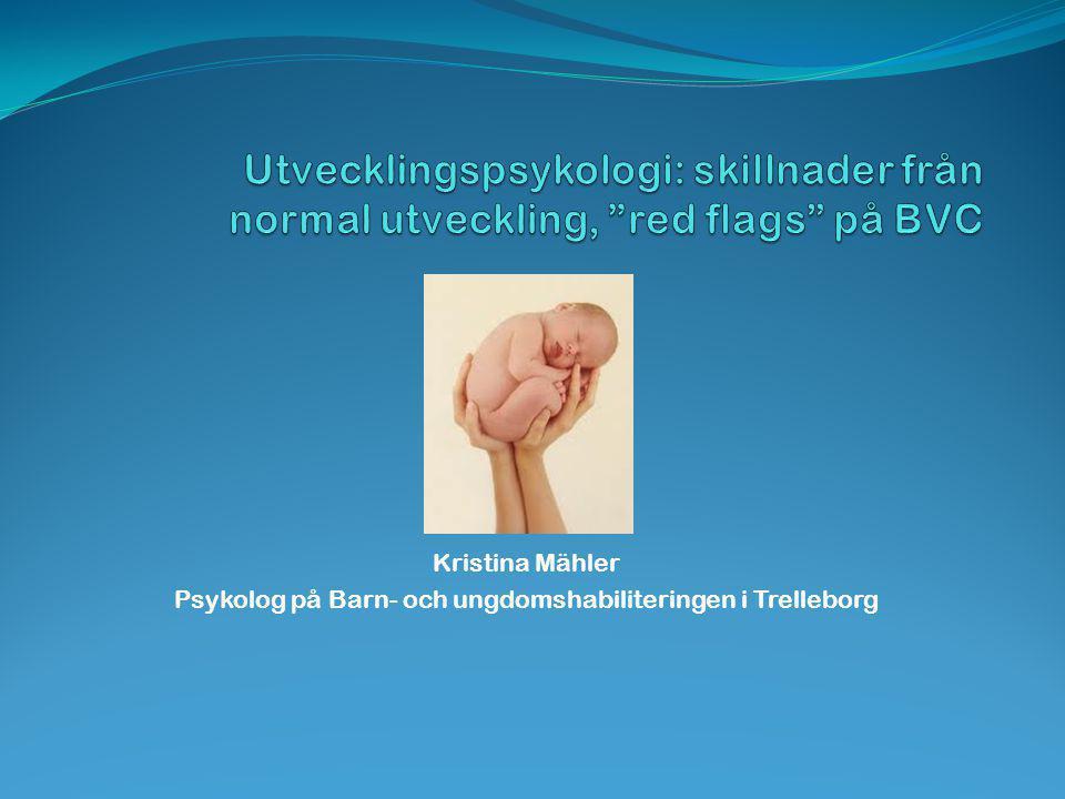 Kristina Mähler Psykolog på Barn- och ungdomshabiliteringen i Trelleborg