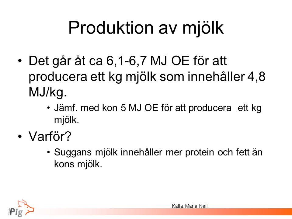 Produktion av mjölk Det går åt ca 6,1-6,7 MJ OE för att producera ett kg mjölk som innehåller 4,8 MJ/kg. Jämf. med kon 5 MJ OE för att producera ett k