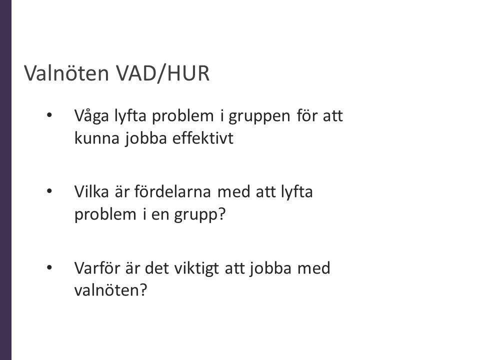 Valnöten VAD/HUR Våga lyfta problem i gruppen för att kunna jobba effektivt Vilka är fördelarna med att lyfta problem i en grupp? Varför är det viktig