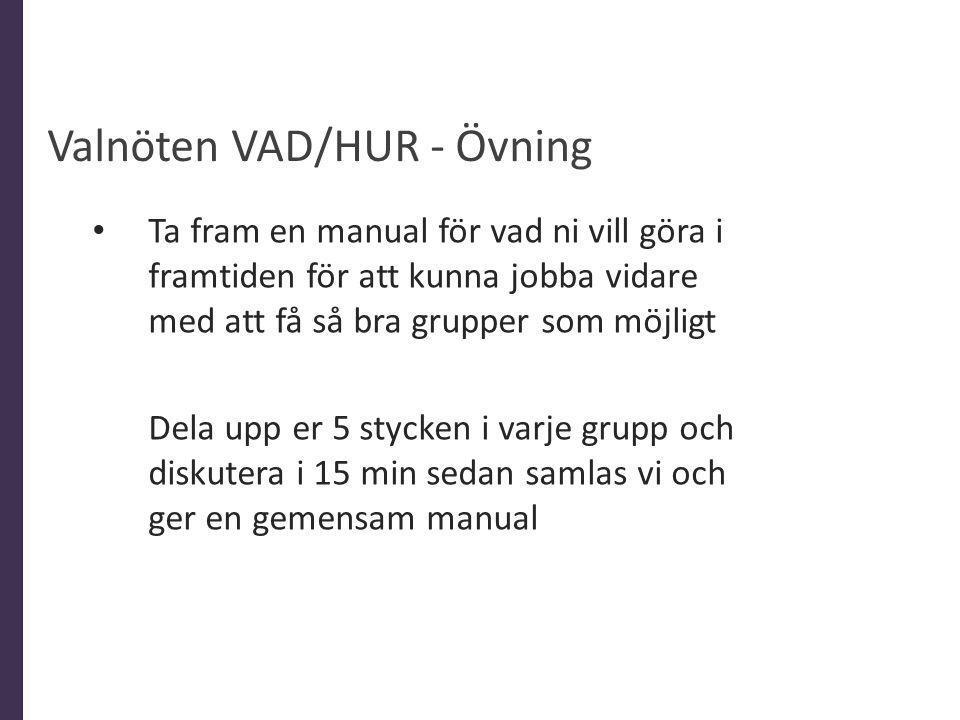 Valnöten VAD/HUR - Övning Ta fram en manual för vad ni vill göra i framtiden för att kunna jobba vidare med att få så bra grupper som möjligt Dela upp