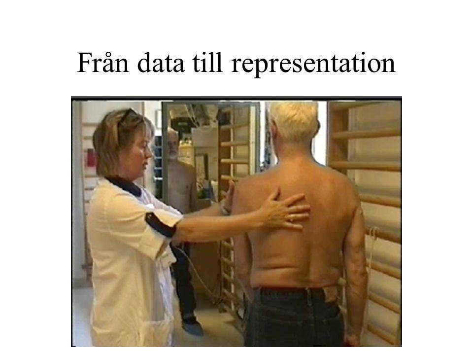 Från data till representation