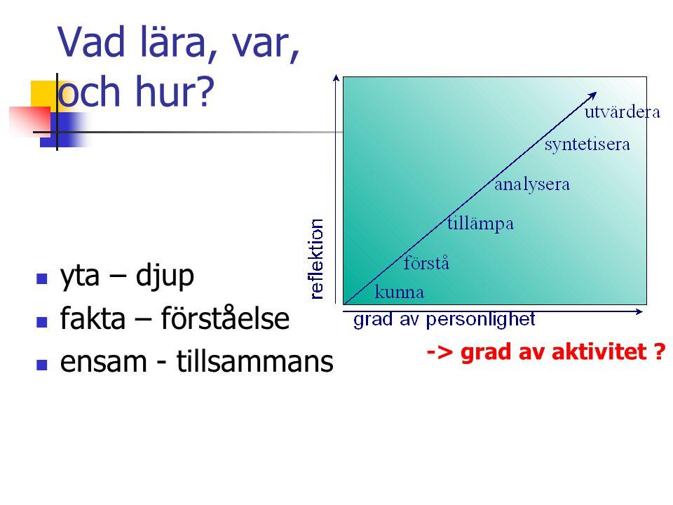 Vad lära, var, och hur? yta – djup fakta – förståelse ensam - tillsammans -> grad av aktivitet ?