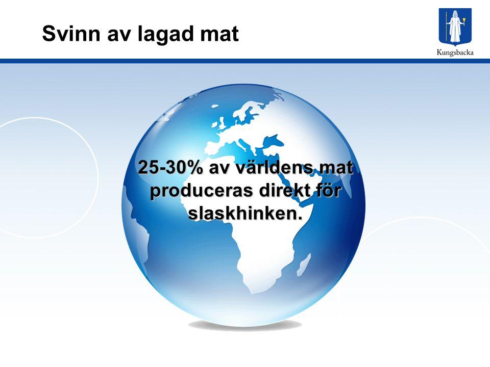 Svinn av lagad mat 25-30% av världens mat produceras direkt för slaskhinken.