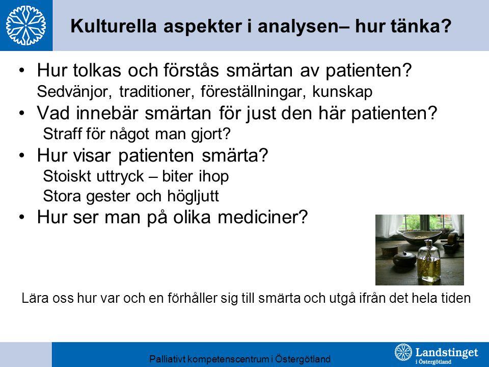 Kulturella aspekter i analysen– hur tänka.Hur tolkas och förstås smärtan av patienten.