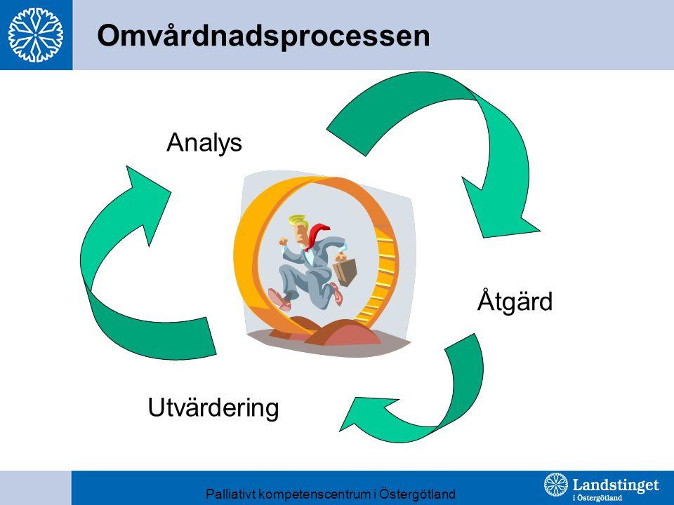 Analys Åtgärd Utvärdering Palliativt kompetenscentrum i Östergötland Omvårdnadsprocessen