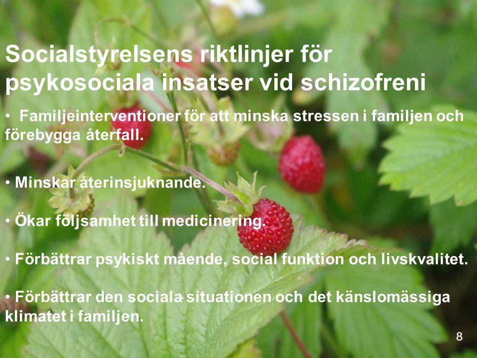 Socialstyrelsens riktlinjer för psykosociala insatser vid schizofreni Familjeinterventioner för att minska stressen i familjen och förebygga återfall.