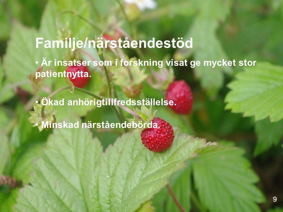 Familje/närståendestöd Är insatser som i forskning visat ge mycket stor patientnytta.