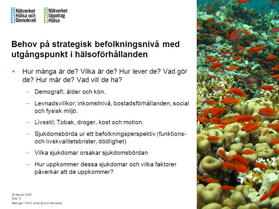 28 februari 2009 Blekinge 110412, Anne Bylund Nätverken Sida 13 Behov på strategisk befolkningsnivå med utgångspunkt i hälsoförhållanden  Hur många är de.