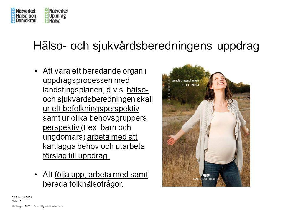 28 februari 2009 Blekinge 110412, Anne Bylund Nätverken Sida 19 Att vara ett beredande organ i uppdragsprocessen med landstingsplanen, d.v.s.