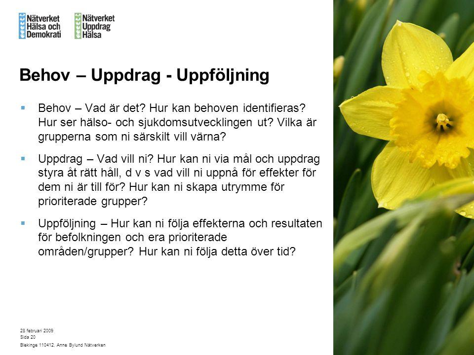 28 februari 2009 Blekinge 110412, Anne Bylund Nätverken Sida 20 Behov – Uppdrag - Uppföljning  Behov – Vad är det.
