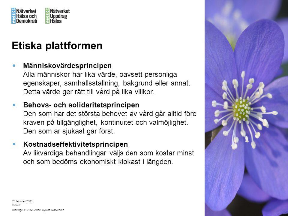 28 februari 2009 Blekinge 110412, Anne Bylund Nätverken Sida 8 Etiska plattformen  Människovärdesprincipen Alla människor har lika värde, oavsett personliga egenskaper, samhällsställning, bakgrund eller annat.
