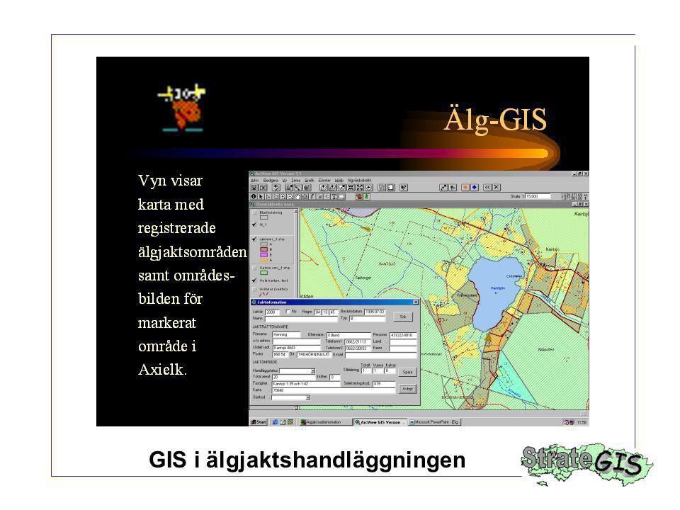 GIS i älgjaktshandläggningen