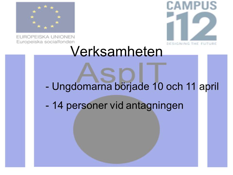 Verksamheten - Ungdomarna började 10 och 11 april - 14 personer vid antagningen