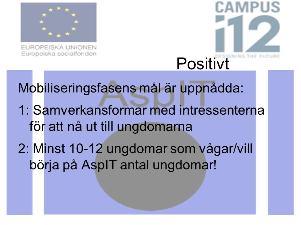 Positivt Mobiliseringsfasens mål är uppnådda: 1: Samverkansformar med intressenterna för att nå ut till ungdomarna 2: Minst 10-12 ungdomar som vågar/vill börja på AspIT antal ungdomar!