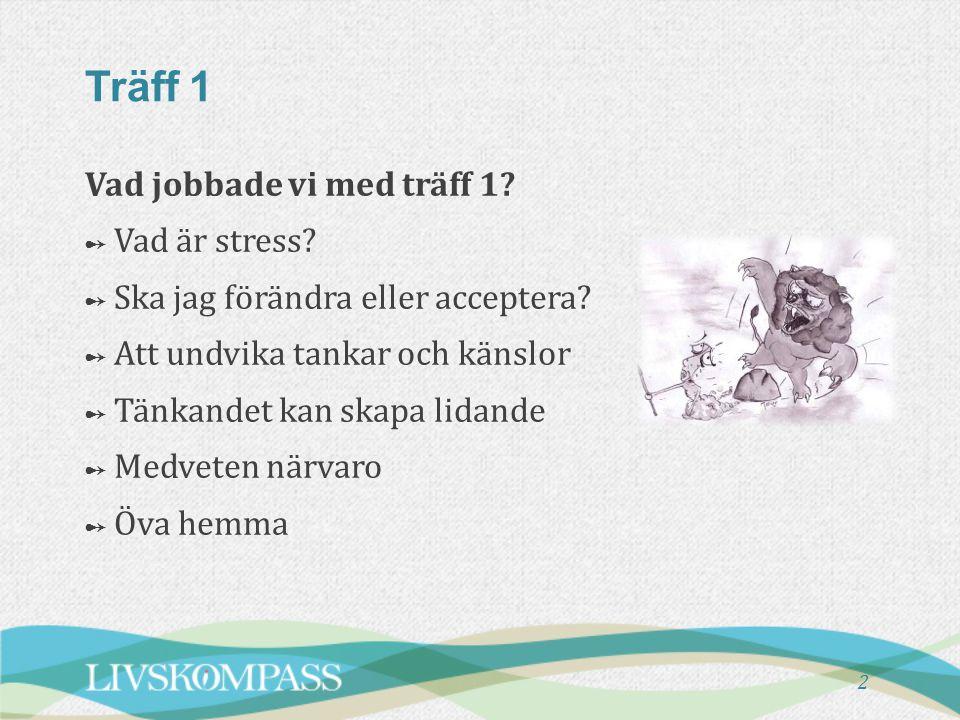 Vad jobbade vi med träff 1? ➻ ➻ Vad är stress? ➻ ➻ Ska jag förändra eller acceptera? ➻ ➻ Att undvika tankar och känslor ➻ ➻ Tänkandet kan skapa lidand