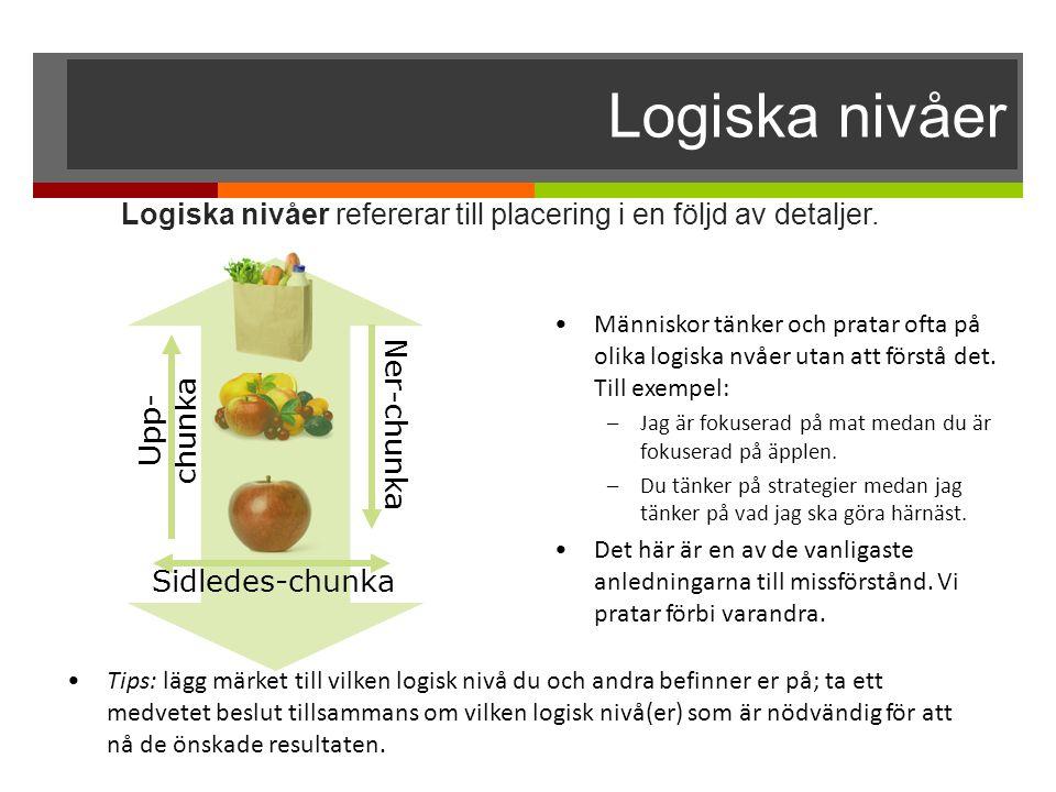 Logiska nivåer Logiska nivåer refererar till placering i en följd av detaljer. Människor tänker och pratar ofta på olika logiska nvåer utan att förstå