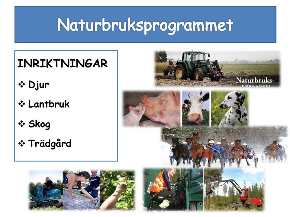 INRIKTNINGAR  Djur  Lantbruk  Skog  Trädgård