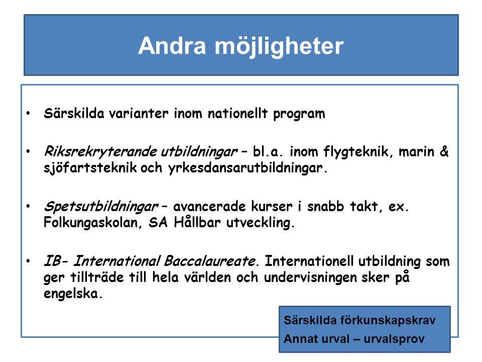 Andra möjligheter Särskilda varianter inom nationellt program Riksrekryterande utbildningar – bl.a.